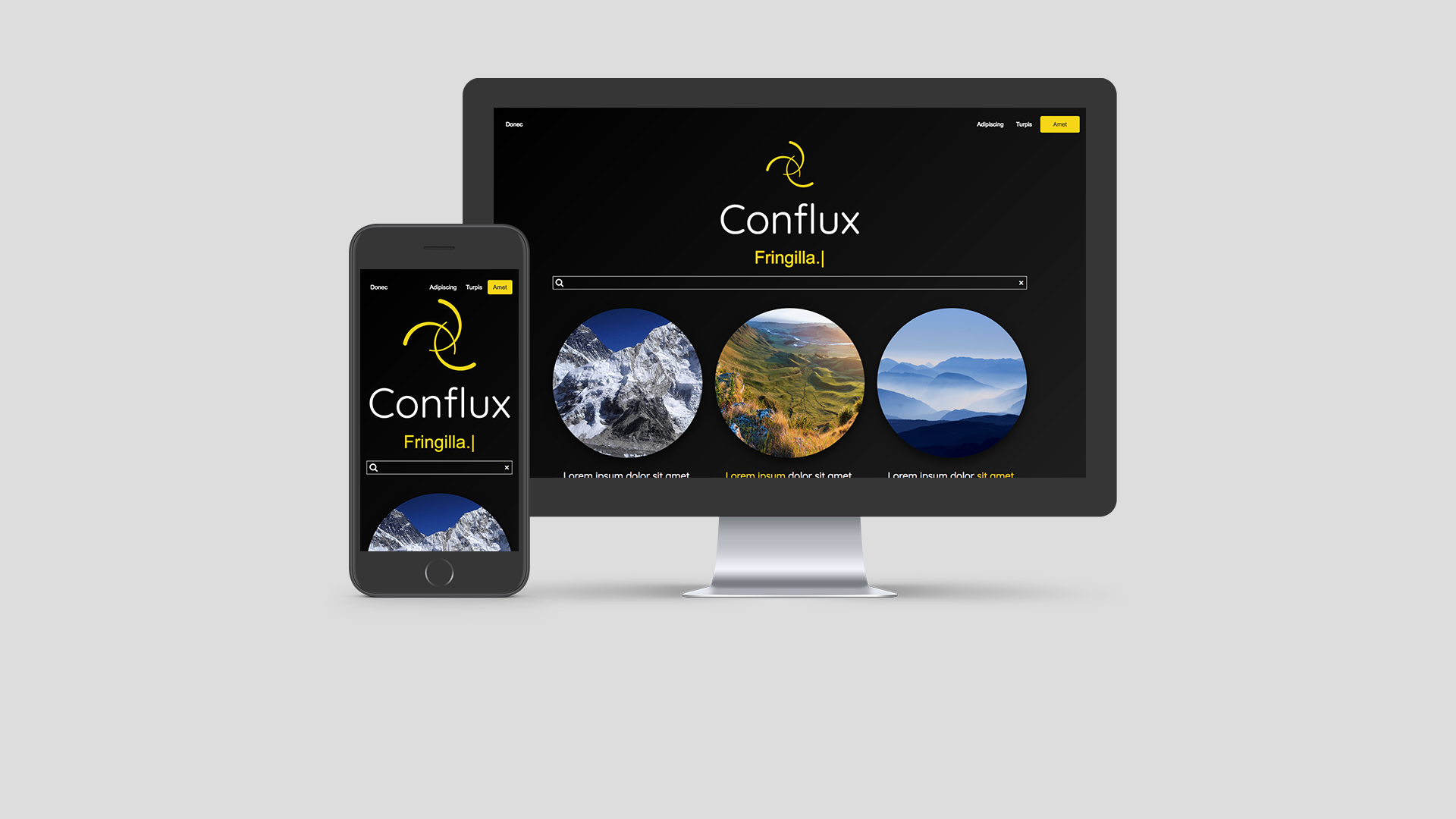 Conflux website template