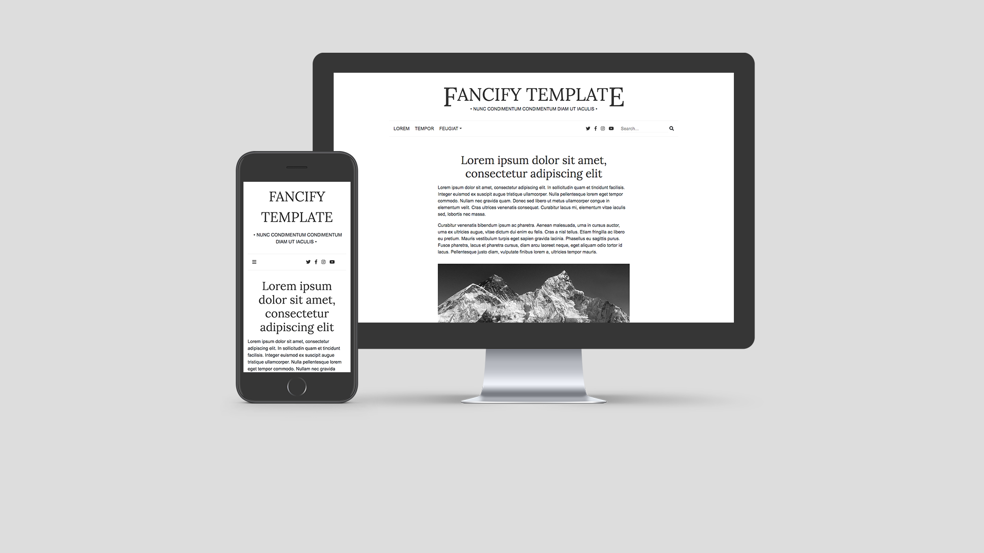 Fancify website template